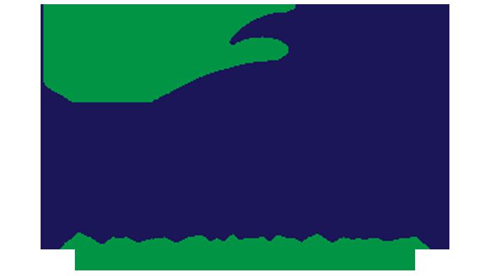 Dollars & Sense Bookkeeping