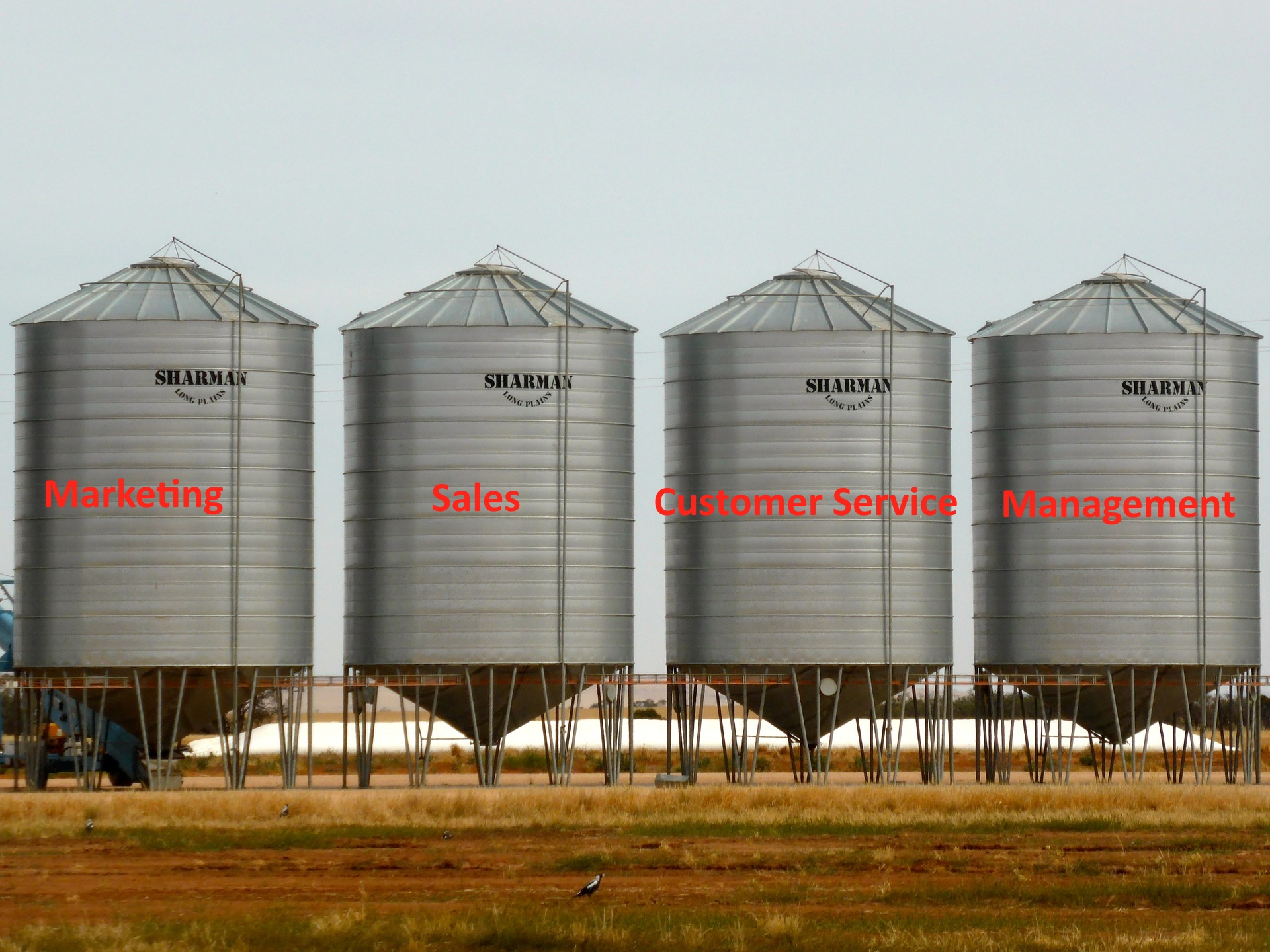 The Damage Caused by Silo Mentality and Compartmentalized Business Roles